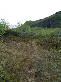 Fadnastølen-Havrane-054