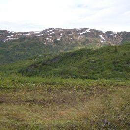 Fadnastølen-Havrane-066