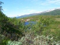 Havrane-Bergsete-005