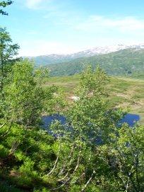 Havrane-Bergsete-016