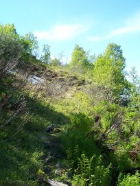 Havrane-Bergsete-017
