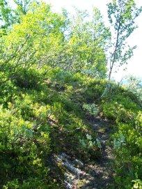 Havrane-Bergsete-021