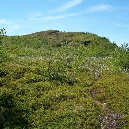 Havrane-Bergsete-033