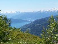 Havrane-Bergsete-034