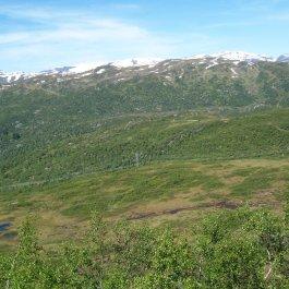 Havrane-Bergsete-037