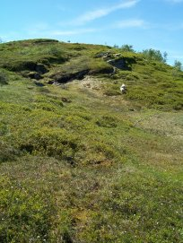 Havrane-Bergsete-041