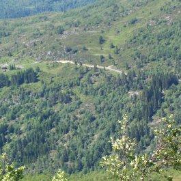 Havrane-Bergsete-044
