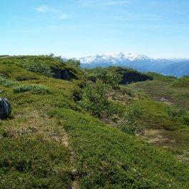 Havrane-Bergsete-047