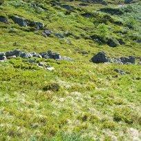 Havrane-Bergsete-052