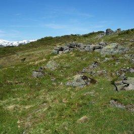 Havrane-Bergsete-057