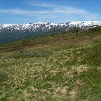 Havrane-Bergsete-058
