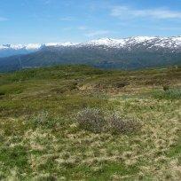 Havrane-Bergsete-059