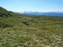 Havrane-Bergsete-061