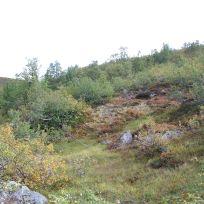 Henjadalen-Sumh og Fj-045