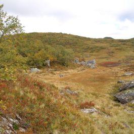 Henjadalen-Sumh og Fj-053