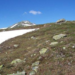 Henjadalen-Kjeringafjell-021