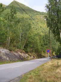 Skjer-Skoparsete-001
