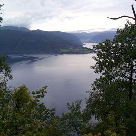 Skjer-Skoparsete-035