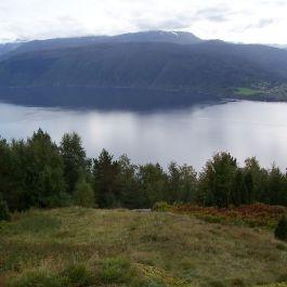 Skjer-Skoparsete-064