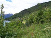 Skoparsete-Eitorn-106