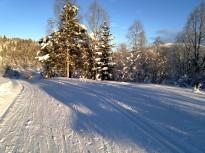 Vinter-Leikanger-014 Løype til Damefall