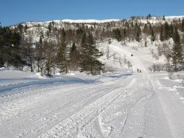 Vinter-Leikanger-020 Damefall