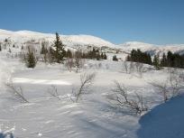 Vinter-Leikanger-040 Stokksete