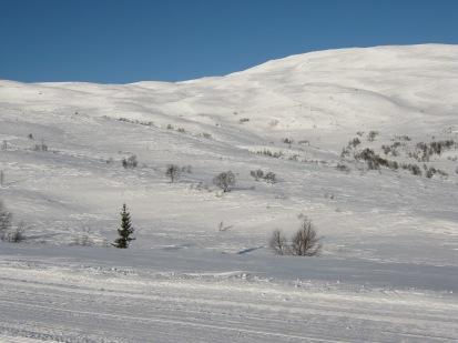 Vinter-Leikanger-051 Kallbakk (360)