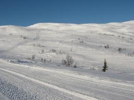 Vinter-Leikanger-052 Kallbakk mot Rjupeskar