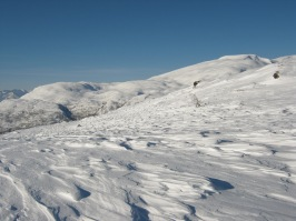 Vinter-Leikanger-080 Dalseteskard