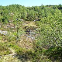 Tuftahaug via Fadnastølen 028
