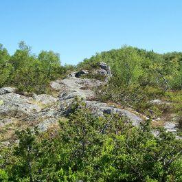 Tuftahaug via Fadnastølen 029