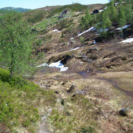 Tuftahaug via Fadnastølen 038