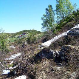 Tuftahaug via Fadnastølen 039
