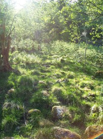 Dalhjedla-Stokksetesti-002