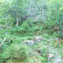 Dalhjedla-Stokksetesti-006