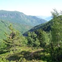 Dalhjedla-Stokksetesti-024