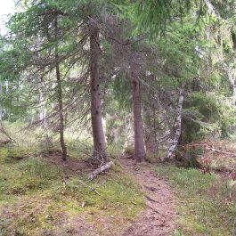 Kleppa-Raumålsgrinda-044