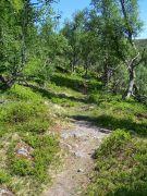 Tuftahaug inn Njøsadalen 037