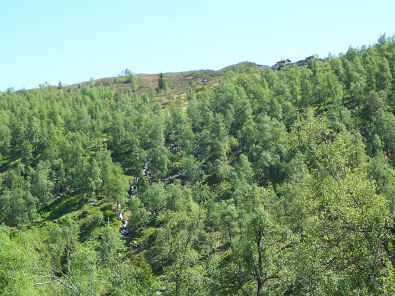 Tuftahaug inn Njøsadalen 040