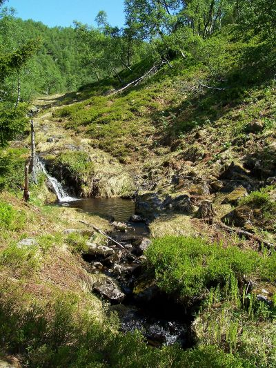 Tuftahaug inn Njøsadalen 046
