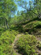 Tuftahaug inn Njøsadalen 048