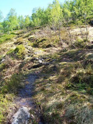 Tuftahaug inn Njøsadalen 050