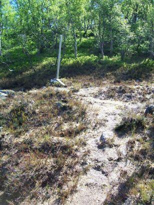 Tuftahaug inn Njøsadalen 051