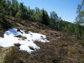 Tuftahaug inn Njøsadalen 052