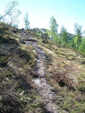 Tuftahaug inn Njøsadalen 054