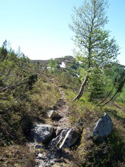 Tuftahaug inn Njøsadalen 055