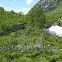 Henjadalen-Friksdal-002