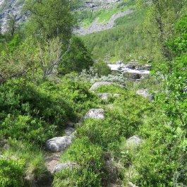 Henjadalen-Friksdal-003