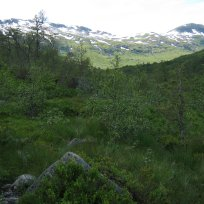 Henjadalen-Friksdal-009